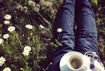 spring (: