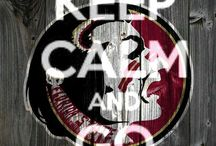 *Florida State Seminoles* / by Janet Poley