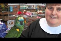 Videos from The Animal Store / These videos will give you just a snippet of all the cool animals at The Animal Store in Lincolnwood, IL.