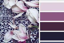 Renkler **