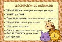 Ideas pal curro / Actividades para trabajar con los niños en atención temprana / by María De Los Ángeles Martín Pedro