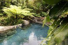 Swimming pool dream
