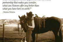 ...it's that dam ol rodeo...