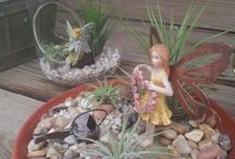 Howell's Fairy Gardens