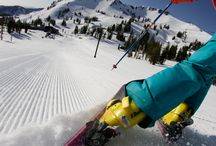 Speed Skiing / One of the extreme sport that gives excitement & thrill.