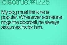 Makes me Laugh!!  ♡