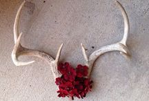 ANTLER PROJECTS / by Melanie Mathews