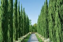 giardini e ingressi