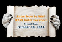 Google+ Contest / Monday and Wednesday contests on Google+ / by HotelPlanner