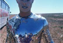 percilla Queen of the desert