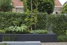 Uthus/Garden / Uteplass med overbygg