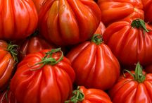 Heirloom Tomato / Inspiration board for the new scent, Heirloom Tomato