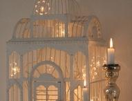 Candles Illuminate
