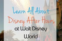 WDW Tours and Special Events
