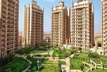 ATS New Launch Project Gurgaon
