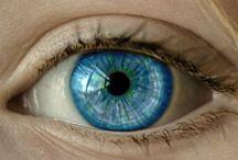 Oogaandoeningen / Ontdek artikelen over bekende en minder bekende oogaandoeningen.