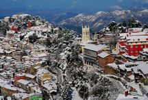 touroperatorsinshimla deal with various packages for shimlatouroperators / To visit in entire touroperatorsinshimla always welcome you to come shimla and enjoy the season of shimla. This rainy season enjoy the green and cool environment of shimla. Shimlatouroperators give you best deals with car renta in shimla. we give best Offer for every customers. We provide best hotels in shimla, manali as client requirement.