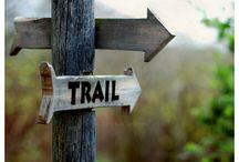 Places I'd like to Hike / by Laura Elliott-Meyer