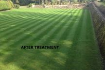 Lawn Care South East