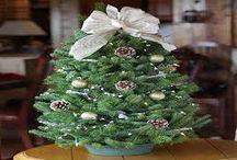Christmas trees / What I love.