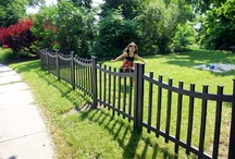fencing for renter house