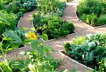 Beautiful Gardens / I wish to grow such plants and create such garden some day :-D