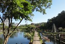 Bali / Een reis naar Bali is fantastisch. Schitterende rijstvelden, prachtige stranden en mooie tempels zijn de ingrediënten van een reis op Bali.