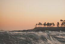 california dreaming / by Alexa Hodges