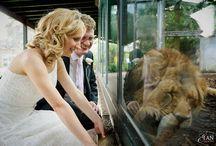Bristol Zoo Weddings