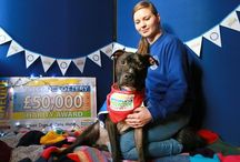 People's Postcode Lottery supports Battersea / The players of People's Postcode Lottery help to support Battersea Dogs & Cats Home.
