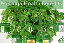Moringa Health / Benefits of Moringa