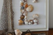 Conchas/Sea shell