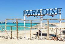 Paradise / Creativity