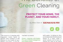 Eco-Friendly Green Living Tips and Ideas