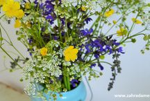 Bunches of flowers / Various bunches of flowers