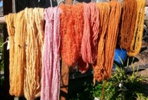 Natural dyes; plants&shrooms