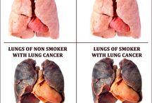 lungs xxx