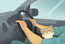 I love cat cartoons