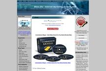 Marketing Site Screenshots / Screenshots of my internet marketing sites and blogs