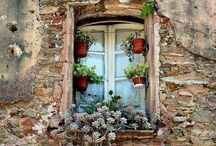 Watercoulour Old Window Geranium France