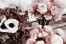 ~Flowers♡♡♡