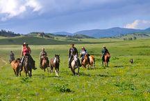 Horse adventure holiday