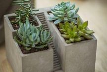 Fantastic concrete pots to decorate
