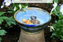 pítko pro ptaky