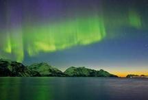 Aurora Borealis (Northern Lights) / by Hurtigruten