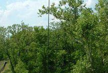 amateur radios / Hamradio, hf antennas