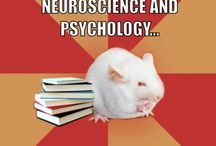Social Neuroscience / Neuroscience of Psychopathy and futuristic research