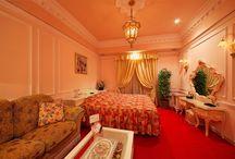 Guest Rooms / Room No.505