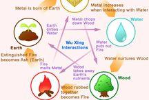 de 5 elementen