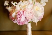 pinks hot pink soft pinks wedding